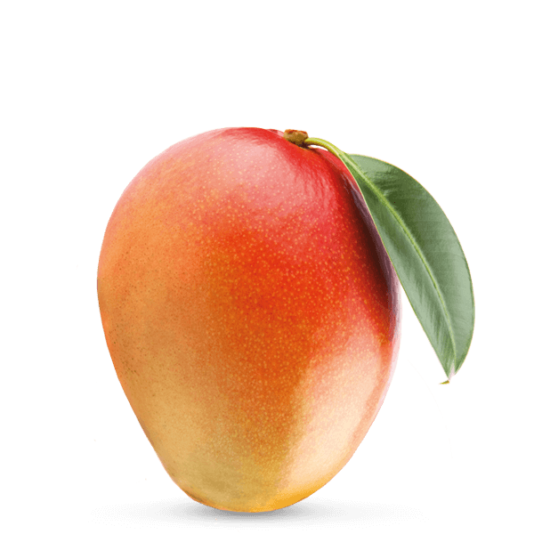Front View Mango